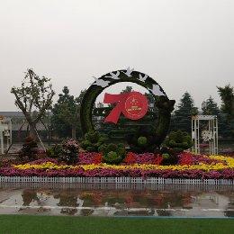 五色草造型花开中华